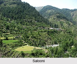 Salooni, Chamba District, Himachal Pradesh