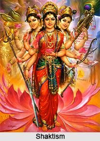 Shaktism in Narada Purana