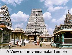 Tiruvannamalai Temple, Tamil Nadu