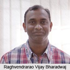 Raghvendrarao Vijay Bharadwaj, Karnataka Cricketer