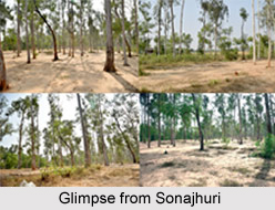 Sonajhuri, Birbhum District, Shantiniketan