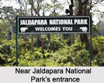 Jaldapara Wildlife Sanctuary, Jalpaiguri District, West Bengal