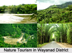 Tourism in Wayanad District