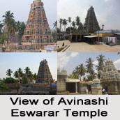Avinashi Eswarar Temple, near Tiruppur, Tamil Nadu