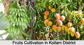 Economy of Kollam District, Kerala