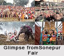 Sonepur Cattle Fair, Bihar